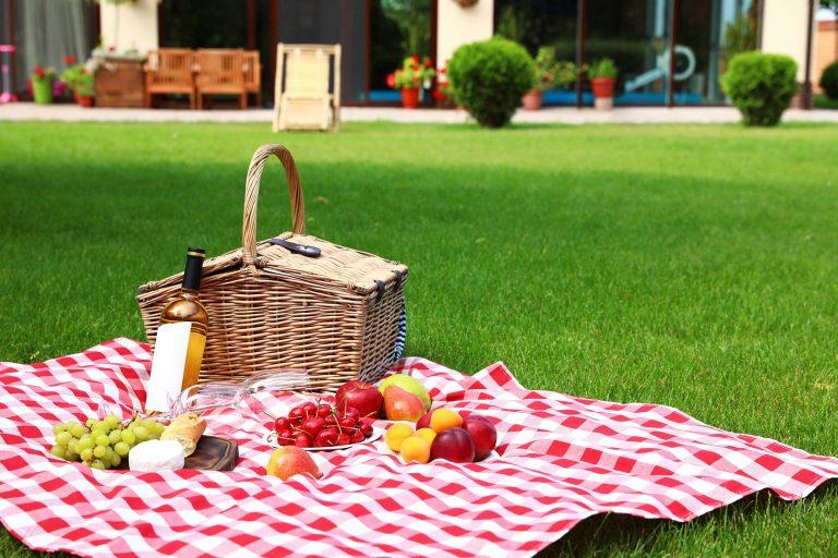 picnic blankets