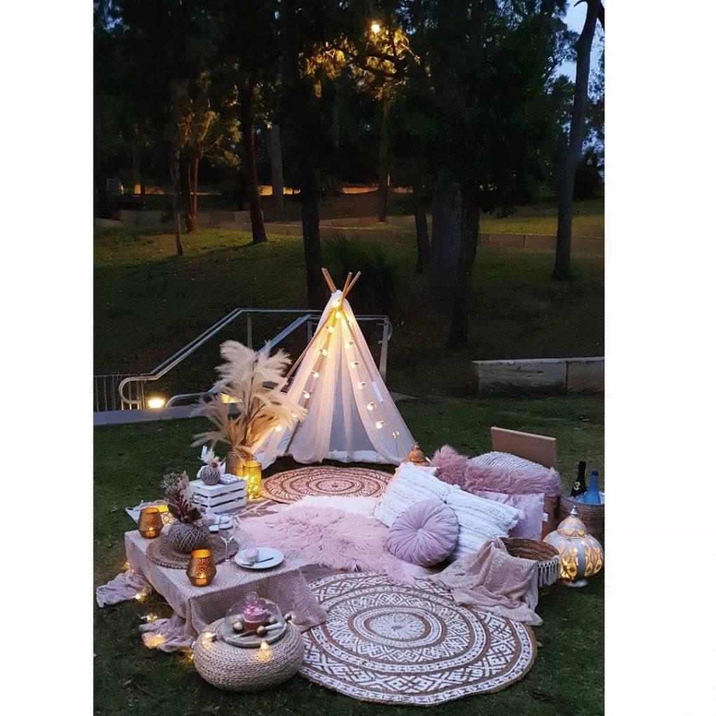 elegant picnic tent with lights