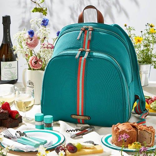 luxury picnic backpack