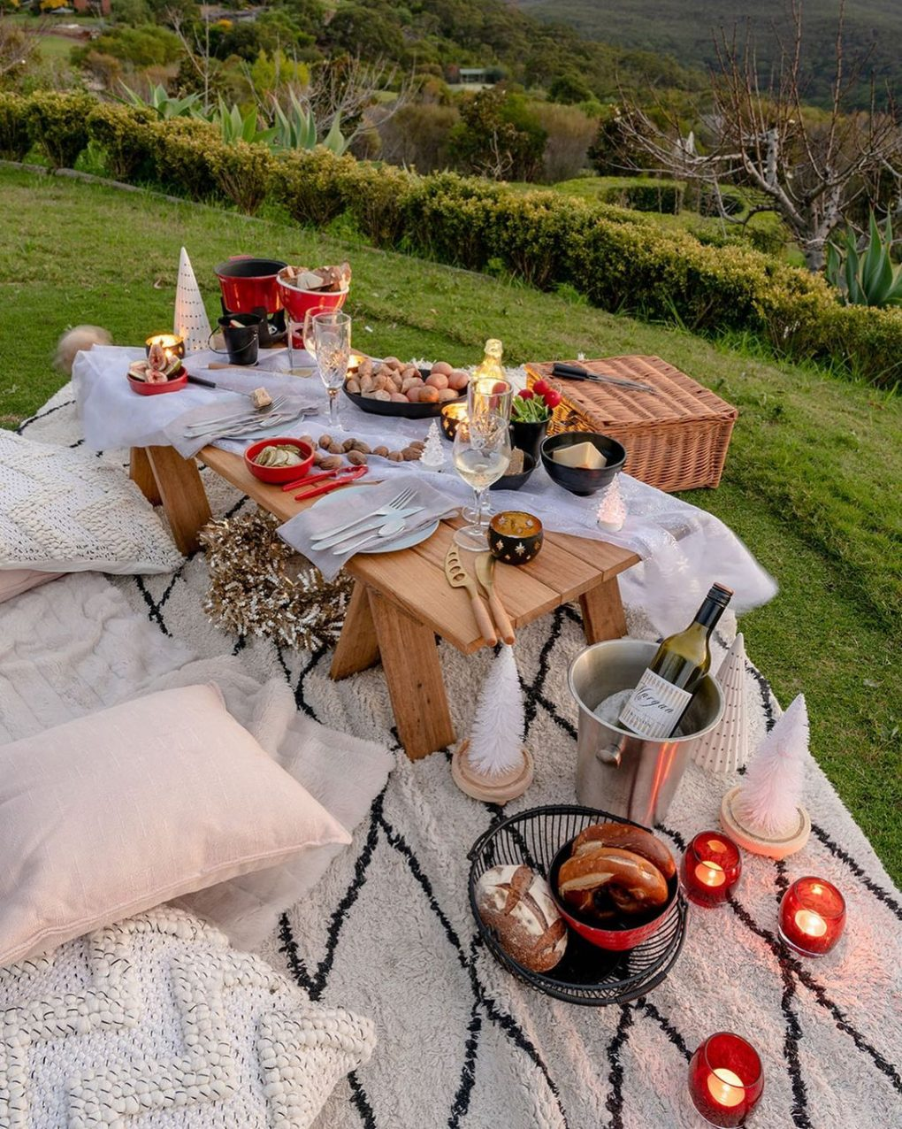 cozy picnic blanket for cold weather